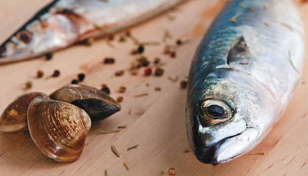 吃好魚/黑鮪魚、魩仔魚...5種海鮮最好少吃! - 康健雜誌156期
