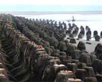 台灣12座沙灘被謀殺