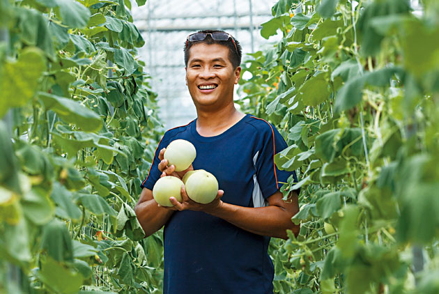 青年農民返鄉務農 支持吃在地、食當季的...