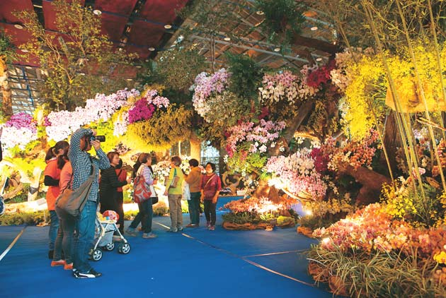 Taiwanese Orchids to Bloom in Desert Countries
