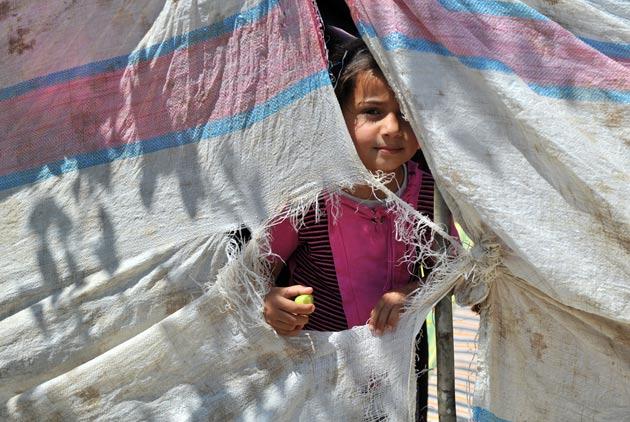 敘利亞 一切都沒了