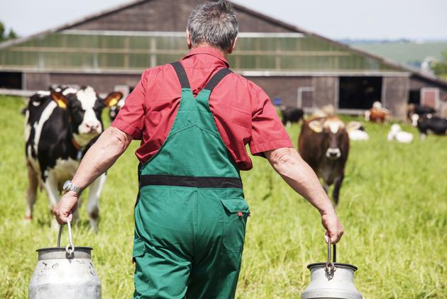 紐西蘭酪農業與台灣觀光業,有什麼共通點...