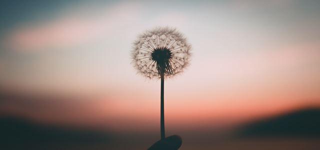 【那些字根教我們的人生】Forgive來自Give──班花,下輩子我們一起「給予」吧!
