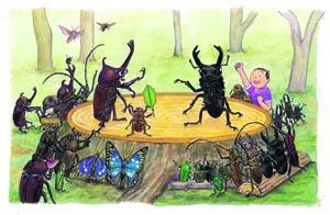 張東君:這個夏天,讓孩子迷上昆蟲