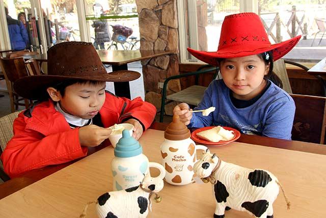 新光兆豐休閒農場:搭遊園火車尋訪小動物