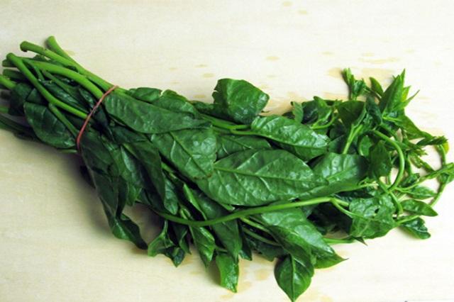 面對餿油風暴 多吃鄉土蔬菜 排毒效果好