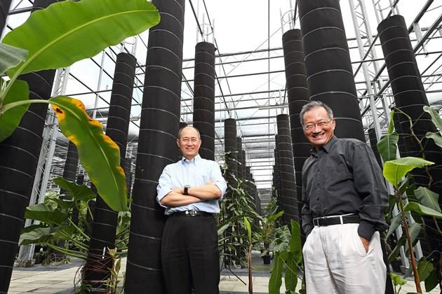 全球最大熱帶植物保種中心在台灣 邀你一起守護...