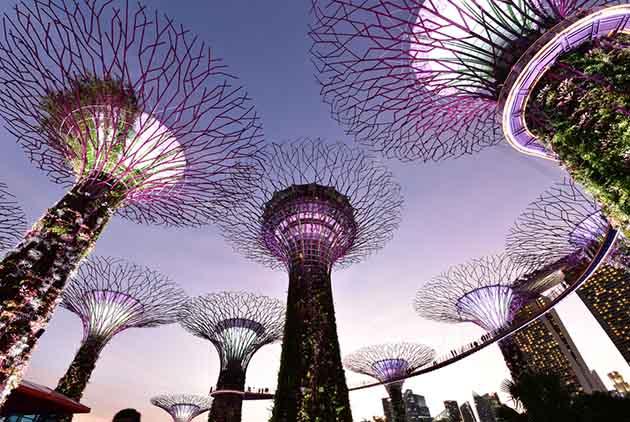 在新加坡,找工作只要花8週