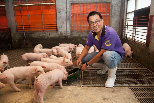 Raising Pigs with a Good Conscience