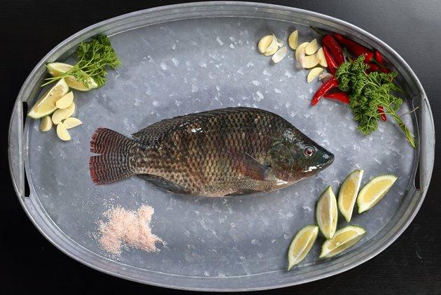 【幸福台灣味,60好食材】台灣鯛 吳郭魚大變身,南部魚塭的強韌生命力