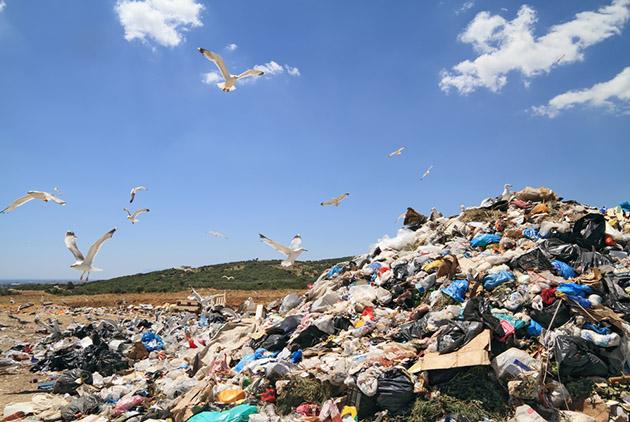跟9萬座艾菲爾鐵塔一樣重  83億噸塑膠快壓垮地球