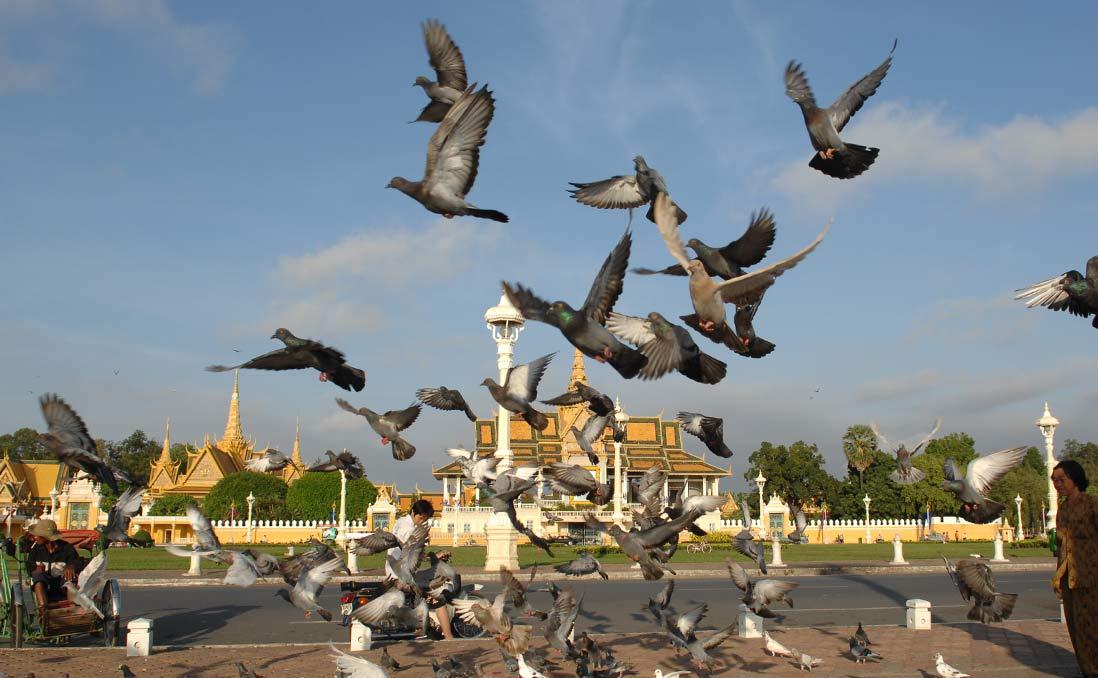 柬埔寨──力挽狂瀾的最後