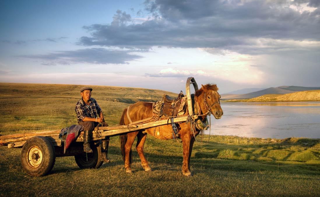 內蒙古的草原上,沒了牛群的牧人