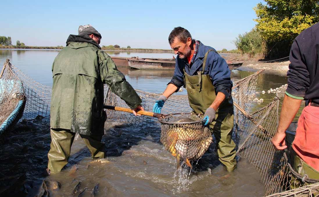 30歲,我在阿布達比管理養殖漁業──漁夫的一天
