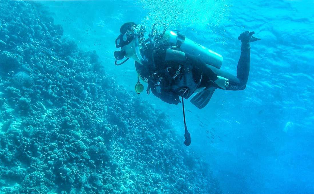 在「世界上學潛水最便宜的地方」,浮潛、度假、學呼吸
