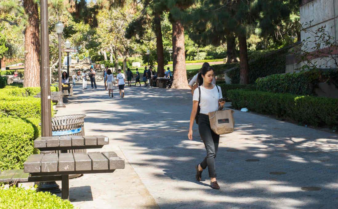 「不要用腳的大小,衡量你能跑多遠」──中離職場,海外求學,是生命的逃避還是解方?
