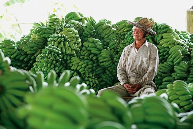 一根香蕉的「全球在地化」